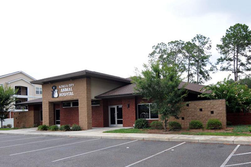 Azalea City Animal Hospital